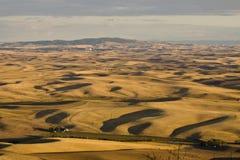 Долина Palouse, восточный штат Вашингтон Стоковое фото RF