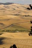 Долина Palouse, восточный штат Вашингтон Стоковые Изображения RF