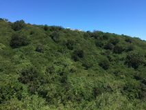 Долина Rapel Стоковое Фото