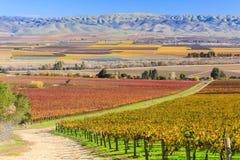 Долина Salinas Стоковое Изображение