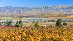 Долина Salinas Стоковое Изображение RF