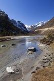 Долина Tsopta, Сикким. Стоковые Изображения