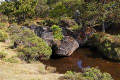 Долина VIII encimadas Piedras Стоковое Фото