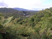 Долина Waimangu вулканическая Стоковые Изображения