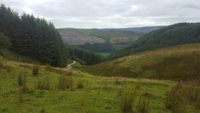 Долина Welsh Стоковое Изображение RF