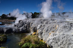 Долина Whakarewarewa гейзеров в новом Zelandii Парк Geotermalny Стоковое Фото