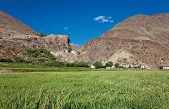 Долина Zanskar, Ladakh, Джамму и Кашмир, Индия Стоковые Изображения RF