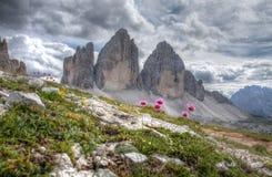 Доломиты в Италии стоковая фотография