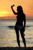до свидания заход солнца Стоковое Фото