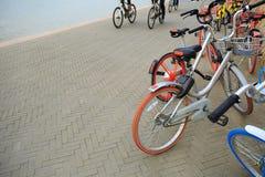 Доля велосипеда на взморье Стоковое фото RF