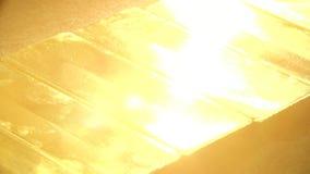 Драгоценное множество миллиарда riches золота видеоматериал