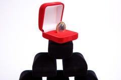 драгоценности монетки коробок Стоковая Фотография RF
