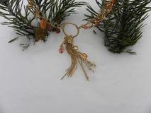 Драгоценность в снеге с ветвями ели Стоковые Изображения