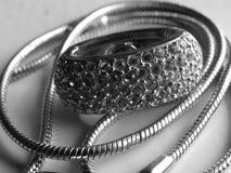 драгоценность серебристая Стоковое Фото