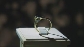 Драгоценные кольца с бриллиантом Точный роскошный дисплей окна украшений диаманта с педантом кольца Изолированное кольцо золота с Стоковые Фото