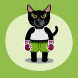 Драка кота бесплатная иллюстрация