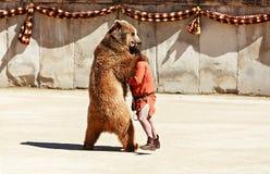 Драка с медведем стоковые изображения