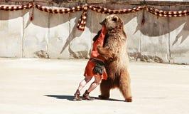 Драка с медведем стоковые фото