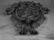 Дракон под экраном Стоковые Фото