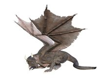 дракон сказки перевода 3D на белизне стоковая фотография