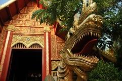 Дракон стиля золотого naga тайский и величественный висок золота Стоковая Фотография RF
