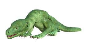 дракон Hatchling фантазии перевода 3D на белизне Стоковые Изображения