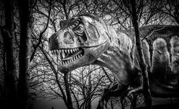 Драматическая скульптура динозавра в черно-белом Стоковое фото RF