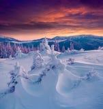 Драматическая сцена зимы в прикарпатских горах Стоковая Фотография RF