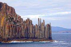 Драматическая Tasmanian береговая линия, Австралия Стоковые Изображения RF