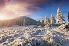 Драматический восход солнца зимы в прикарпатских горах с covere снега Стоковая Фотография