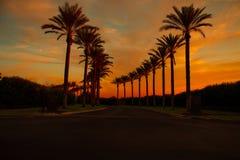 Драматический заход солнца и небо восхода солнца Стоковое Изображение RF