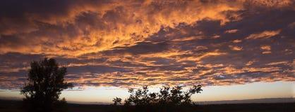 Драматический заход солнца как огонь в небе с золотыми облаками Panoram Стоковая Фотография