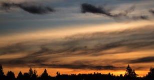 Драматическое, красивое и красочное облако в силуэте неба и дерева захода солнца сумрака вечера сеть обоев etc предпосылок предпо Стоковое фото RF