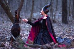 Драма костюма Очаровательная и загадочная Maleficent женщина с сердитой High стоковые изображения