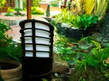 Древесина Азии дома завода природы зеленого цвета сада лампы Стоковое Изображение