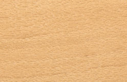 древесина бука предпосылки Стоковые Изображения RF