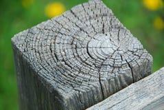 древесина вала текстуры кец Стоковые Изображения RF