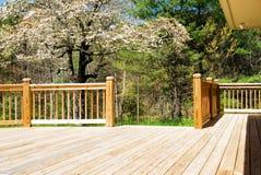 древесина весны палубы широкая стоковое фото