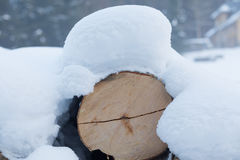 Древесина вносит дальше древесины в журнал Стоковые Изображения