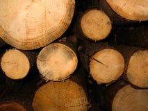 Древесина вносит предпосылку в журнал Стоковое фото RF