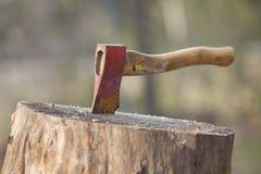 древесина вставленная осью Стоковые Фотографии RF