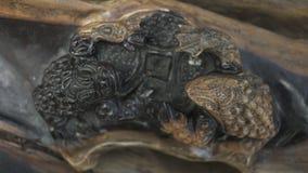 Древесина высекая жаб Стоковая Фотография