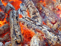 Древесина в пожаре Стоковое Изображение