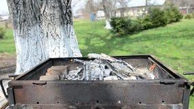 Древесина горя в металлическом барбекю видеоматериал