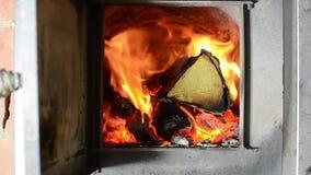 Древесина горя в плите, звуке горящей древесины, звуке огня Мир и тишь сток-видео