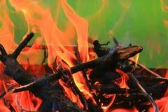 Древесина горя на пожаре Стоковое Изображение
