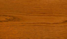 древесина дуба Стоковая Фотография