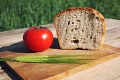 Древесина еды Стоковые Фотографии RF