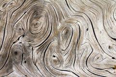 Древесина завихряется органическая текстура предпосылки Стоковое фото RF