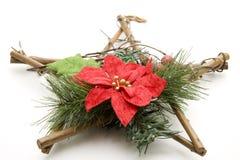 древесина звезды рождества Стоковые Изображения
